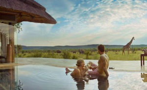 Luxury Honeymoon Safari