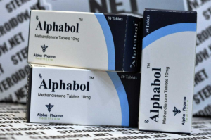 BUY ALPHABOL–10mg Methandienone (50 TABLETS)