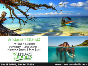Make Your Trip Memorable with Traveltoons!!!