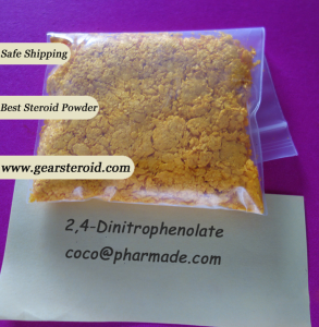 DNP 2,4-Dinitrophenol raw powder for loss weight