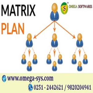Make MLM Matrix Plan Software @ very low cost
