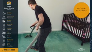 Carpet Cleaning Odenton MD