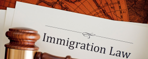 BUSINESS IMMIGRATION LAWYER