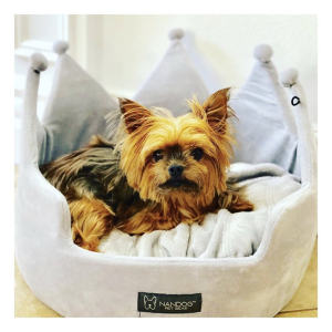 Luxurious dogs bed for healthier pets