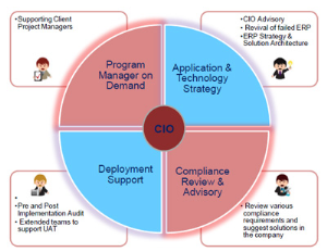 Virtual Cio Consulting