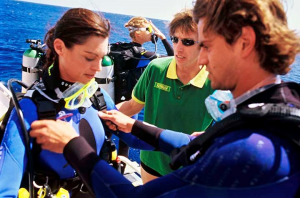 Padi Divemaster Internship Training Program