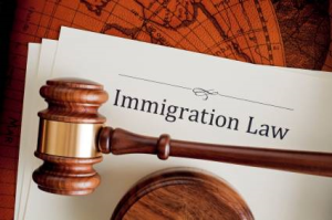 immigration lawyer Service in USA