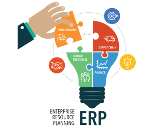 ERP Application Software