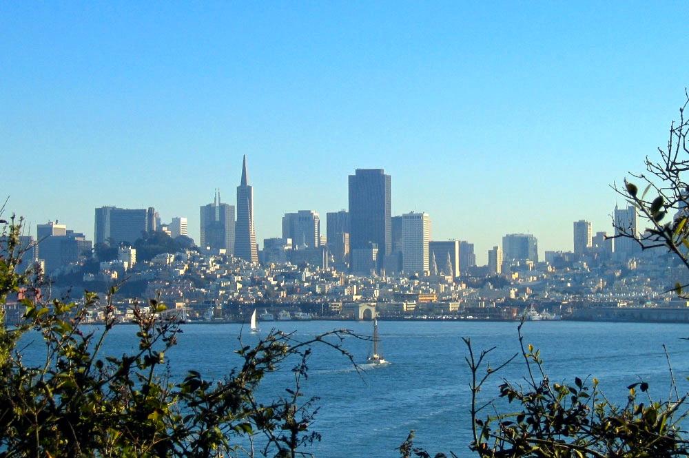 Skyline View San Francisco