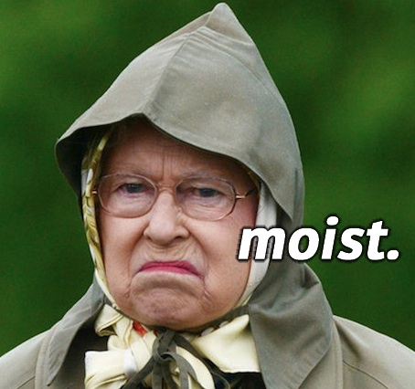 The Word Moist Is The Worst