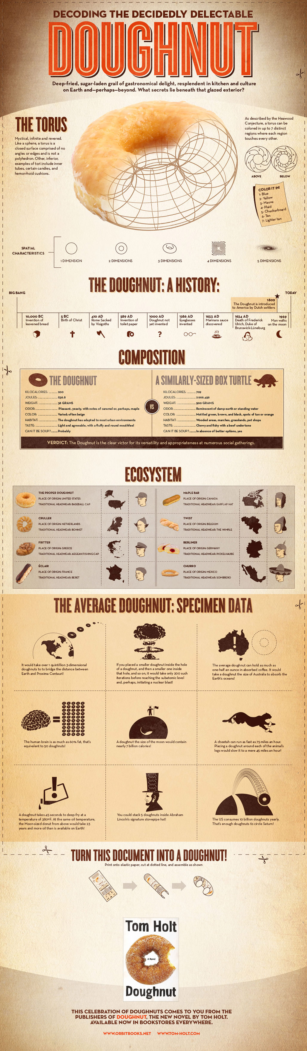 Dougnut Infographic - Click to enlarge!