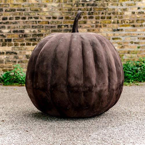 Pumpkin 37 Inch  Largest