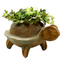 Primitive Tortoise Pot 14