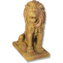 Lion 36' Facing Right