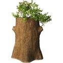 Tree Trunk Planter 30