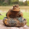 Frog Prince 6.5 H
