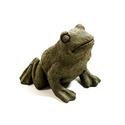Tweeky Frog 4X 5 X 4.5