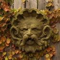 Neptune Mask Of Frigid Cold