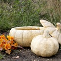 Wide Pumpkin Planter