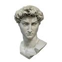 Head Of David From Orig-48