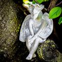 Meditating Dragon 13