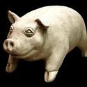 Pig For Pig Roast