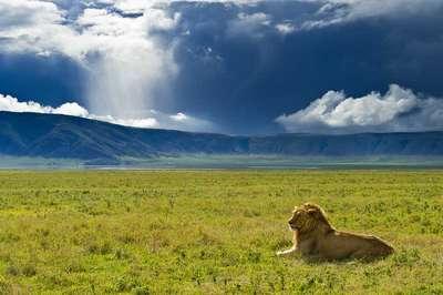 Orms tanzania tour ngorongorocraterextension elliottneep04