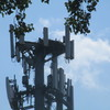 Sylvan_tower