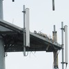 Osprey_cell_towers_007