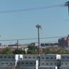Osprey_nest_port_of_maryland_north_side_locust_point_marine_terminal_baltimore__md_9-24-2021-2