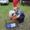 2011_july_4_fallen_osprey_rescue_1898
