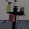 4-7-13_channel_marker_5_osprey_nest-2