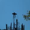 2517-osprey-pd_water_tank_2