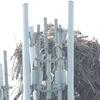 2521-ospreynest-radiotower_bysheliajohnson