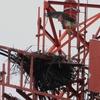 Dsc_9057