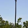 Seacamp_osprey_nest_from_north.844_copy