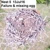 Nest_5_13jul16