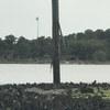 Pole_damage