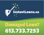 Website for Instant Lawns
