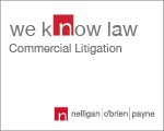 Website for Nelligan O'Brien Payne LLP