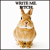 plot bunny - &#x27;Write me bitch!&#x27;