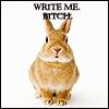 plot bunny - 'Write me bitch!'