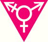 Transvengers Initiative
