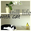 Still life with cat, by Juno