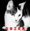 Teeny Gozer grows up!