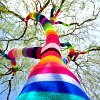 lookin up a rainbow-coloured tree