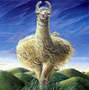 llama against sky art icon