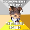 NO ONE WANTS TO BE YOUR FRIEND THEY ARE ALL SCARED