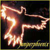 juniperphoenix&#x27;s icon