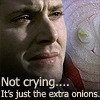 ExtraOnions Icon